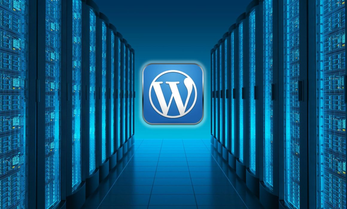 Jacksonville website hosting experts